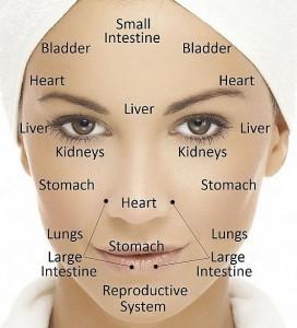 gezichtsdiagnose acupunctuur praktijk tilburg